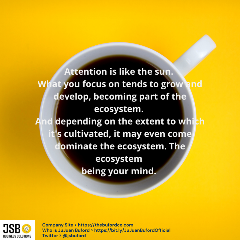 Attention is like the sun. What you focus it on tends to grow and develop  becoming part of the ecosystem. And depending on the extent to which it's cultivated  it may even come dominate the ecosystem ecosystem.