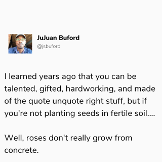 RosesFromConcrete
